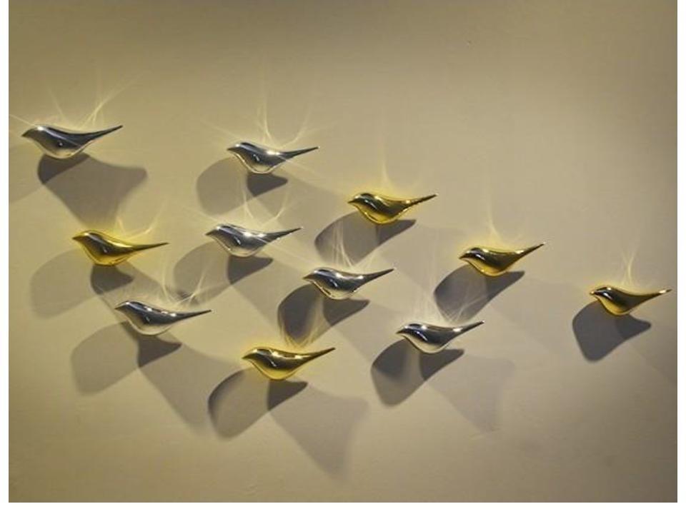 3D Effect Birds wall art decor sticker