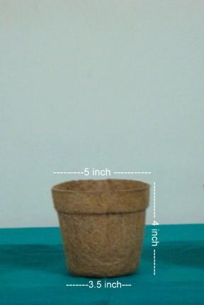 """Coco Nursery pot 5"""""""