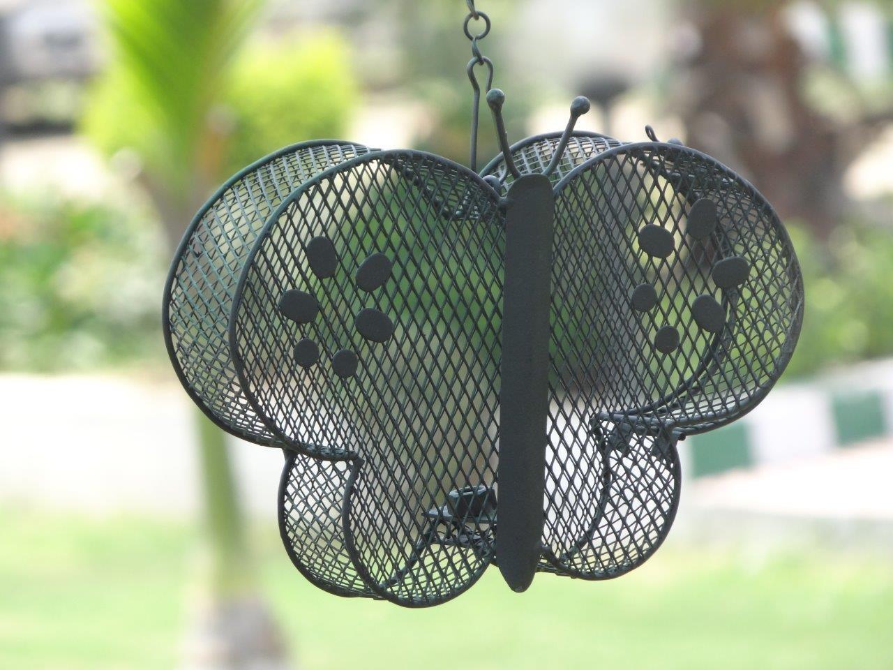 Black Decorative Metal Wire Butterfly Bird Feeder