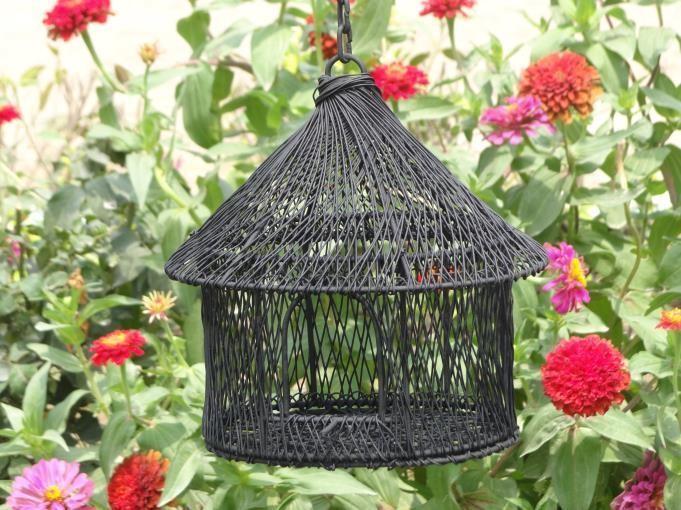 Black Metal Wire Wide Single Window Bird House
