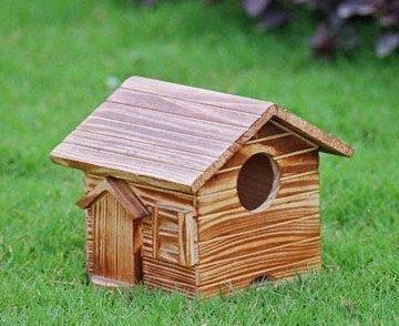 Wooden Texture Designer Bird House