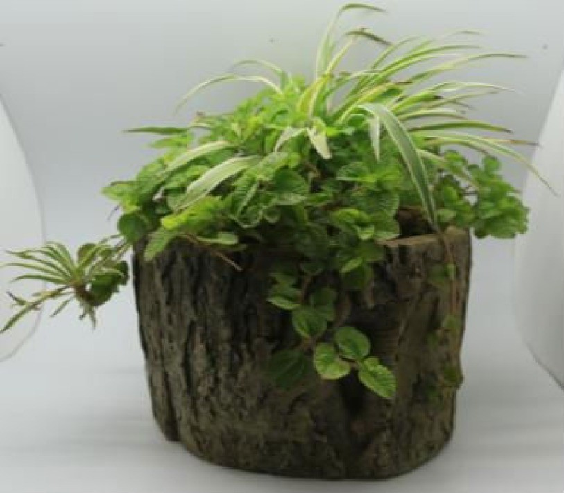 Natural Wood Finish 20 Cm Fiberglass Pots