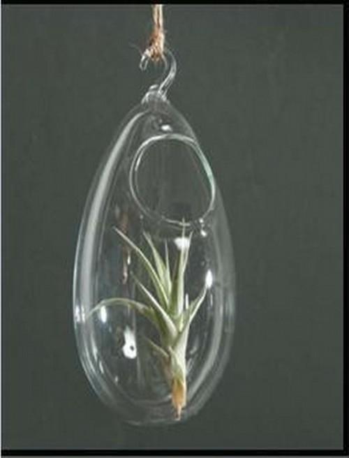 4'' Hanging Egg Shape Borosilicate Glass Vase