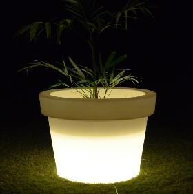Natural Virgin planter With CFL Lights height 900mm
