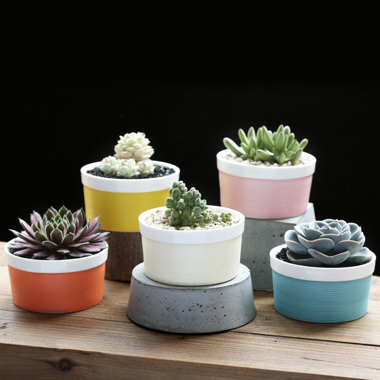 Round Shape Colorful Ceramic Pot Set Of 5 Pcs