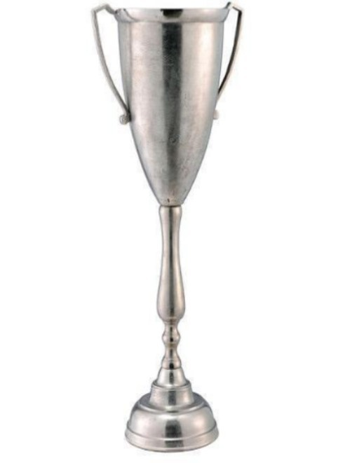 Decorative Trophy DECORATIVE AND GIFTWARE ITEMS