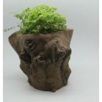 Natural Wood Finish 29 Cm Fiberglass Pots