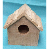 Bird House With Designed Roof