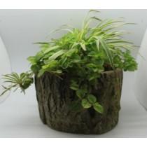 Natural Wood Finish 20 Cm Fiberglass Pots