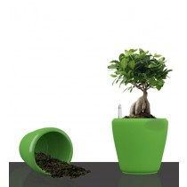 Green Round Self Watering Planter Set of 2 Pcs