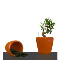 Orange Round Self Watering Planter Set of 2 Pcs