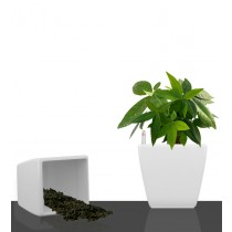 White Square Self Watering Planter Set of 2 Pcs