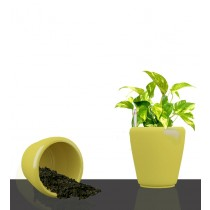 Yellow Round Self Watering Planter Set of 2 Pcs