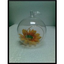 3''  Glass Orange Shape Terrarium