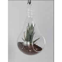4''  Borosilicate Glass Bulb Hanging Vase