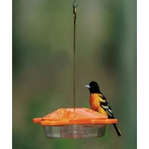 Brass Hanging Rod Bird Feeder