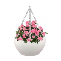 Contemporary White Bowl Shape Hanging Planter