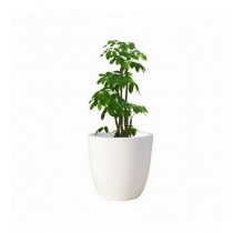 White Round 8 Inch Polystone Planter