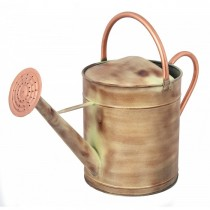 Decorative Bronze And Cream Finish Watering Can