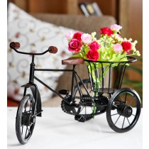 Decorative Fancy Cycle Flower Holder