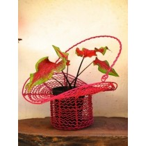 Decorative Red Hat Hanging Basket Planter