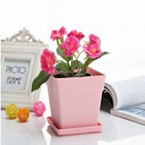 Decorative Small Square Pot