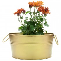 Gold Oval Shape Galvanized Metal Tub Planter
