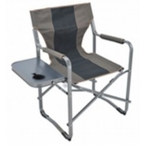 Gray Color Director Chair