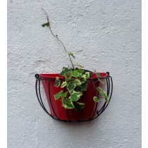 Half Round Wall Basket with Red Pot