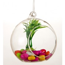 Hanging Glass Ball  Planter-Medium