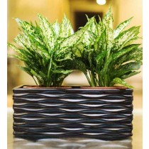 Large Glossy Look Black Rectangular Planter