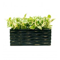 Black Rectangular Shaped 12 Inch Metal Planter