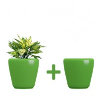 Pack of 2 Cylindrical Square White Planter