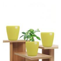 Yellow Polystone Round Planters Set of 3 Pcs
