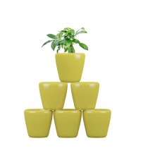 Pack of 6 Cylindrical Round Yellow Planter
