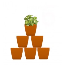 Pack of 6 Cylindrical Square Orange Planter