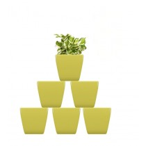 Pack of 6 Cylindrical Square Yellow Planter