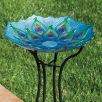 Peacock with Scalloped Edge Glass Bird Bath
