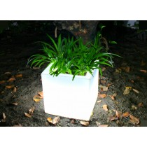 Rectangle Shape Led Planter