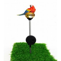 Red Parrot Solar Stick