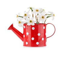 Red with White Doted 5 Inch Watering Can Metal Planters