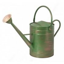 Rustic Green Finish Iron Watering Can With Two Handles