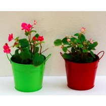 Set Of 2 Green & Red Galvanized Metal Planter