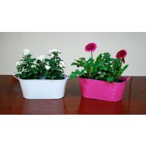 Set Of 2 Embossed Galvanized Metal Planter
