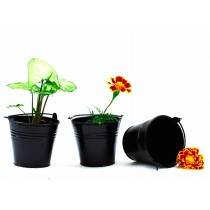 Set Of 3 Black Galvanized Metal Bucket Planter