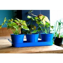 Set of 3 Blue Galvanized Metal Planter With Tray