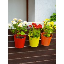 Set Of 3 Round Galvanized Metal Railing Planter