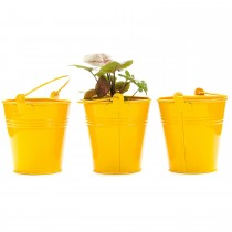 Set Of 3 Yellow Galvanized Metal Bucket Planter