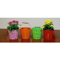 Set Of 4 Multicolored Galvanized Metal Bucket Planter