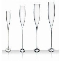 Stemw Magnifico Medium Glass